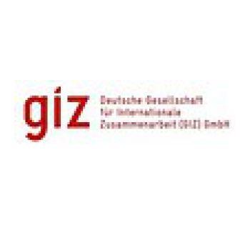 https://www.giz.de/en/html/index.html